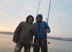 pescuit-la-Dunare
