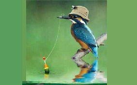 pescar sportiv