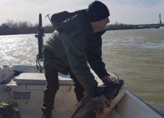 pescardesomn.ro